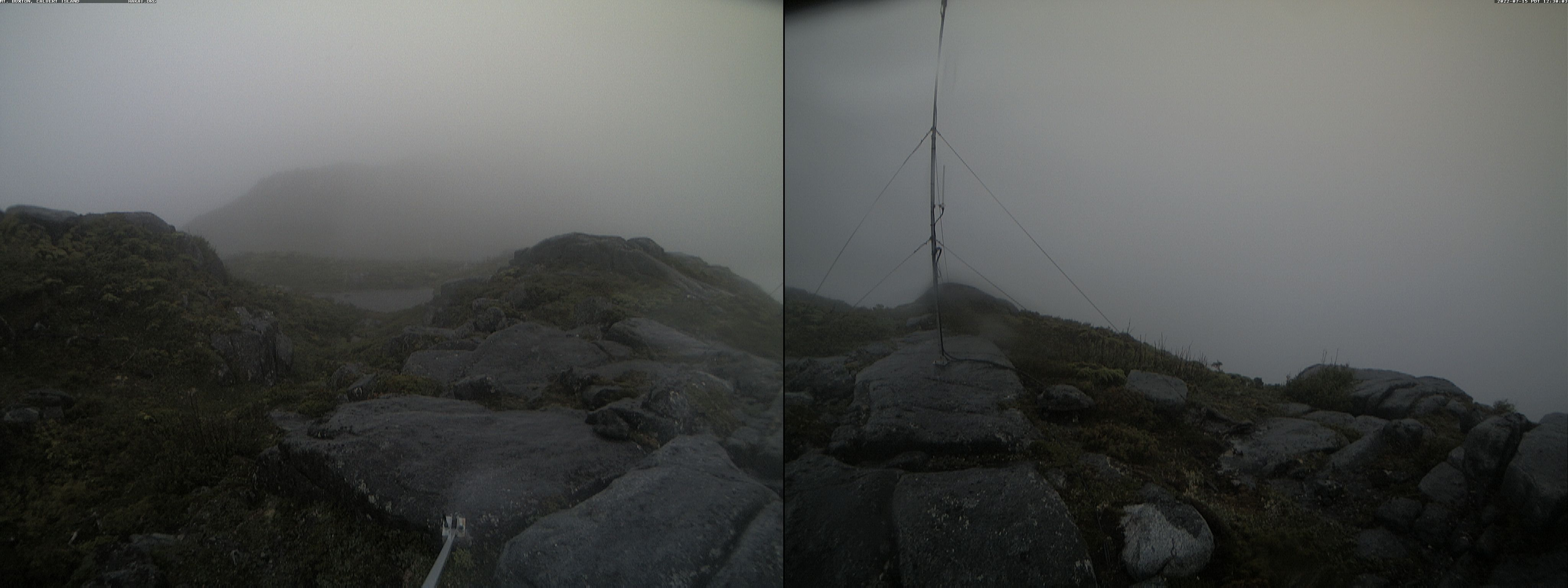 Mt. Buxton #1